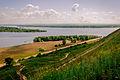 Чёртово городище, уникальный памятник археологии и истории федерального значения, река Тойма.jpg