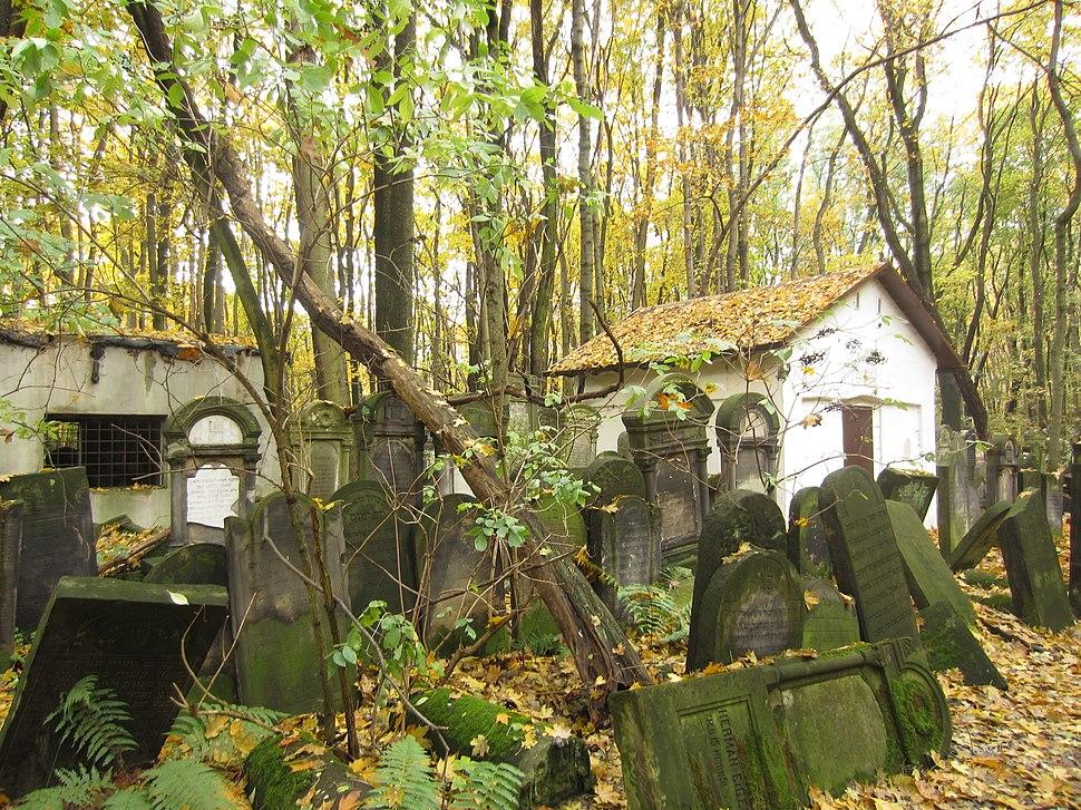 """בית הקברות היהודי בוורשה - אוהל רבי חיים מבריסק והנצי""""ב מוולוז'ין (1)"""