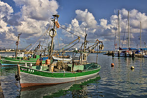 Fishing in Israel - Fishing boats in Akko