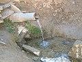 چشمه پناهگاه چنار - panoramio.jpg