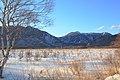 冬の戦場ヶ原, Snowy Senjōgahara - panoramio.jpg
