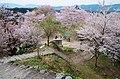 吉野山にて 老人憩の広場 2014.4.12 - panoramio.jpg