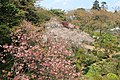 小丸山公園 - panoramio (5).jpg
