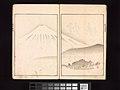 酒井抱一 画 『鶯邨画譜』-Ōson (Hōitsu) Picture Album (Ōson gafu) MET DP263369.jpg