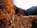 高山集落 - panoramio (1).jpg