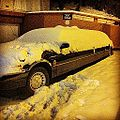 -Snow vs -Limo (8399225459).jpg