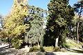 02 Madrid El Retiro Montaña artificial lou.JPG