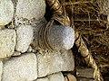 078 Thatch Roof Machu Picchu Peru 2336 (14976812030).jpg