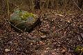 11-12-26-carinhall-by-RalfR-11.jpg