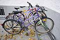 12-11-02-fahrrad-salzburg-04.jpg