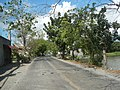 1409Malolos City Hagonoy, Bulacan Roads 18.jpg