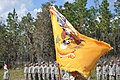 153rd Cavalry, Darkhorse Squadron, Florida National Guard, Colors with Streamers 2009.JPG