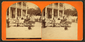 15th Amendment, Jacksonville, from Robert N. Dennis collection of stereoscopic views.png