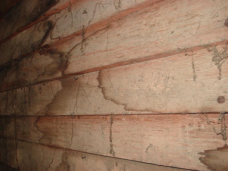 File:1683 oak clapboards attic view.jpg