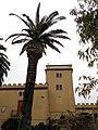 189 Casa Mas (Llorenç del Penedès), palmera i torre.JPG