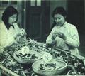 1952-06 1952年养蚕育种.png