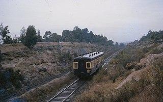 South Maitland Railway railcar