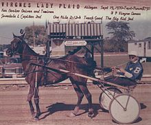 Ken Barlow (harness racing)