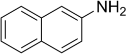 2-Naphthylamine.PNG