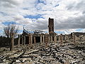 2009 vic bushfire damage Yarra Glen 01.JPG