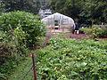 2010 community garden AtlantaGA 4898753854.jpg