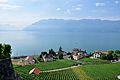 2012-08-12 10-09-50 Switzerland Canton de Vaud Rivaz.JPG
