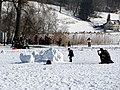 2012 'Seegfrörni' - Türlersee - Hausen am Albis 2012-02-18 12-47-41 (SX230).jpg