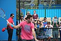 2013 Australian Open IMG 4575 (8392597305).jpg