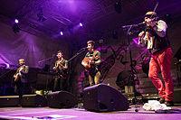 20140705-TFF-Rudolstadt-We-Banjo-3-5808.jpg