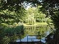 20150628010DR Heynitz (Nossen) Schloßpark Teich.jpg