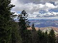 2019-10-27 12 05 53 View east-southeast through Red Spruce forest from the Whispering Spruce Trail just southeast of Spruce Knob in Pendleton County, West Virginia.jpg