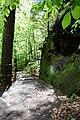20210518. Sächsische Schweiz.Rauenstein.-024.jpg