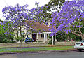20 Northcote Road, Lindfield, New South Wales (2010-12-04).jpg