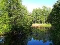 2165. Озеро Собачье в парке Сосновка.jpg