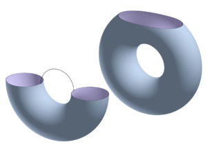 Morse theory - These figures are homotopy-equivalent.