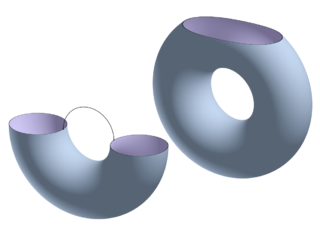 Differential topology Branch of mathematics