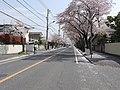 5 Chome Koganehara, Matsudo-shi, Chiba-ken 270-0021, Japan - panoramio.jpg