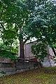 80-385-5006 Kyiv Vyshgorodska Oak SAM 0030.jpg