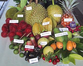 frutas exoticas cuba