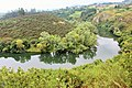 AS-Meandros del río Nora 06.jpg