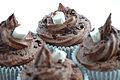 A 'Hot Chocolate' Cupcake, complete with marshmallows and chocolate sprinkles.JPG