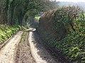 A bridleway, Bradfield - geograph.org.uk - 677909.jpg