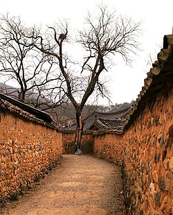 A laneway lined by mud walls in Namsa Village (4458646459).jpg