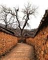 A laneway lined by mud walls in Namsa Village (4458646459).jpg