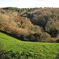 A valley between woods near Lindridge Hill - geograph.org.uk - 1624997.jpg