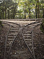 Abō Forest Railway 01.jpg