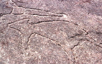 Terrey Hills, New South Wales - Image: Aboriginal rock carvings, Terrey Hills, New South Wales, Sydney Wiki 0157