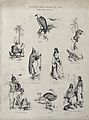 Abyssinia (Ethiopia); Animals and indigenous tribes, includi Wellcome V0022854EL.jpg