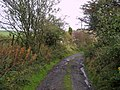 Access Track from Extwistle Hall - geograph.org.uk - 1534837.jpg