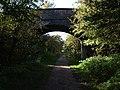 Accommodation Bridge Stafford - Newport Railway - geograph.org.uk - 1010153.jpg